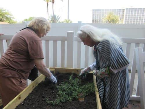 Our residents tend to their gardens to grow beautiful plants!